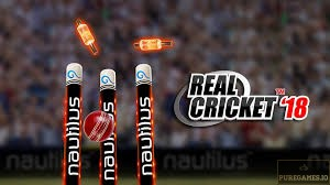 Download Real Cricket 18 APK for Android/iOS 14